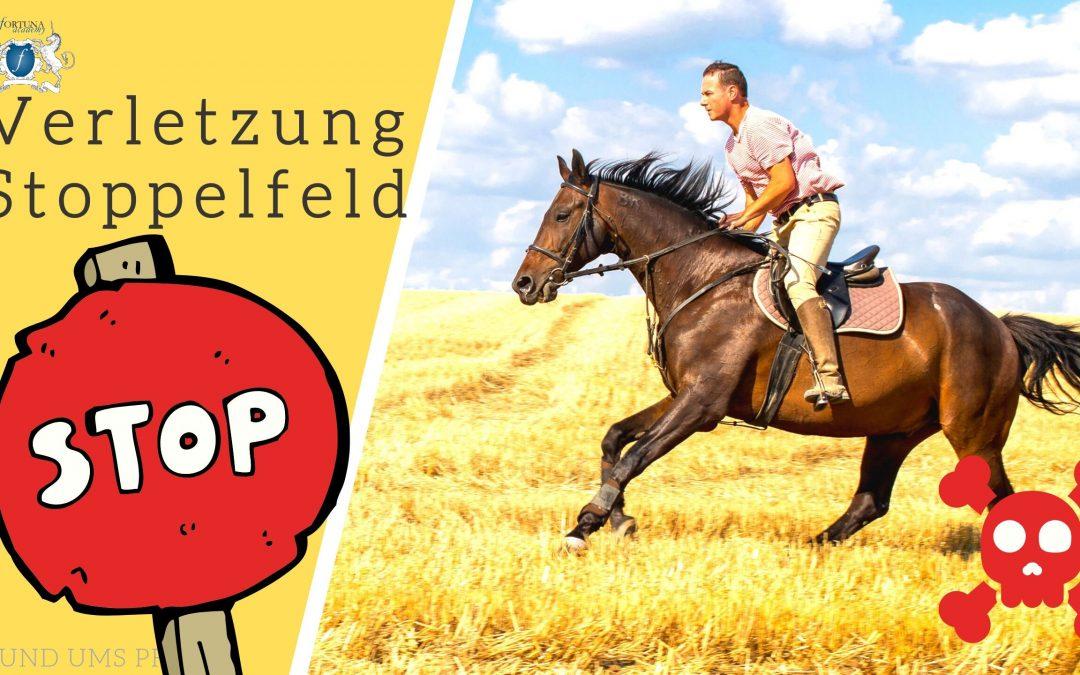 Stoppelfelder